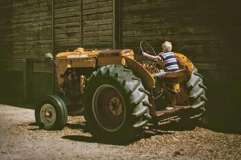wheelerfarm8