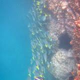 Darwin Bay - Genovesa, Galápagos