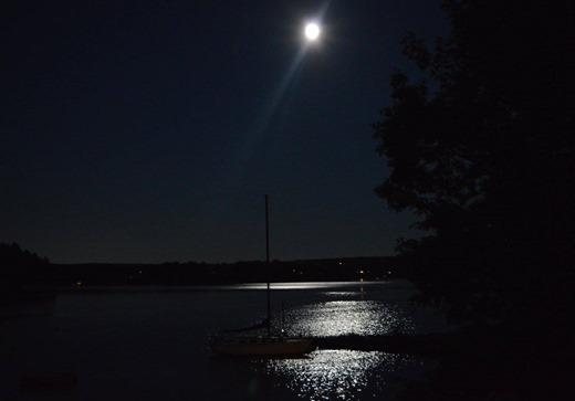 Nova Scotia 43