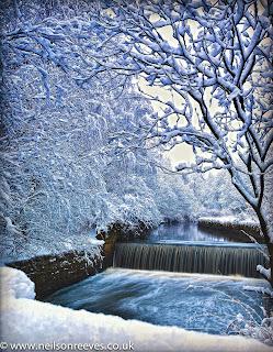 alkrington-woods-snowscape