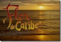 looks da novela Flor do Caribe