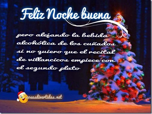 humor feliz navidad cosasdivertidas net    (1)