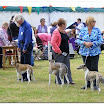 Pedigree Dogs 2015