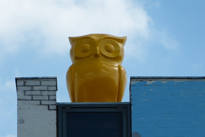 Yellow Owl on the roof of the Custard Factory