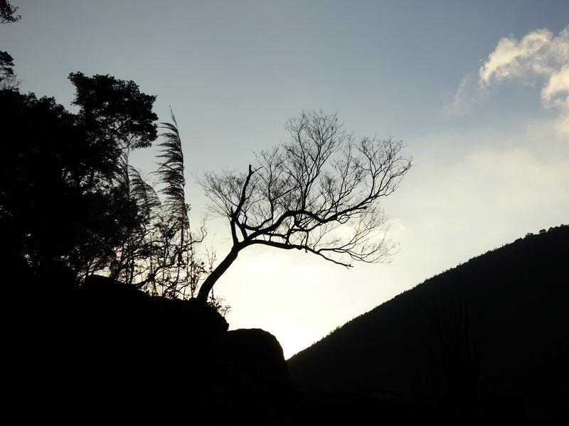 2014_0101-0105 萬山神石、萬山岩雕順訪萬頭蘭山_0889