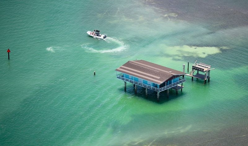 florida houses on the water. stiltsville2 florida houses on the water n
