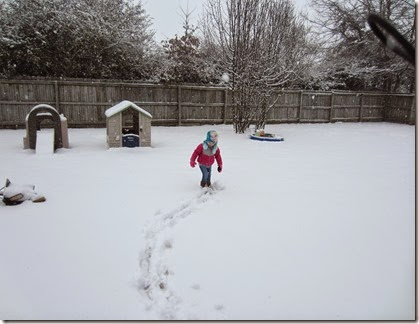 Zoey playing in the snow19