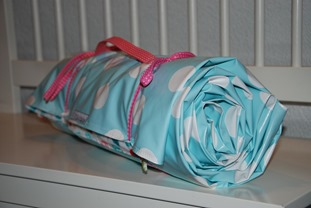 Lisa's picnic blanket rolled up