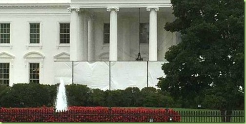 White-House-Screens