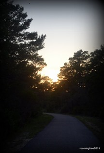 Sunset on the Walking Trail