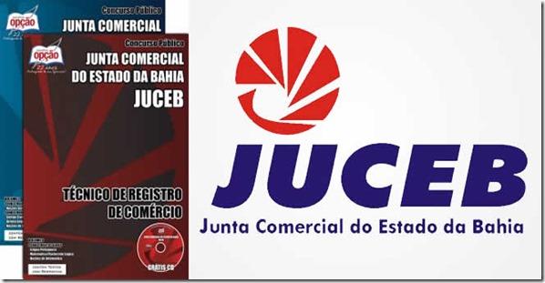 apostila-juceb-junta-comercial-da-bahia-tecnico-registro-comercio