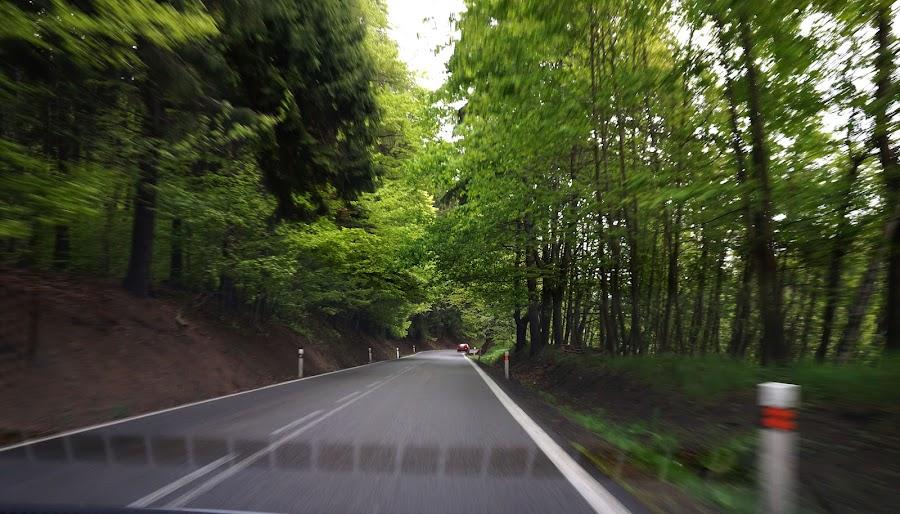 По дороге из Баварии в Южную Чехию