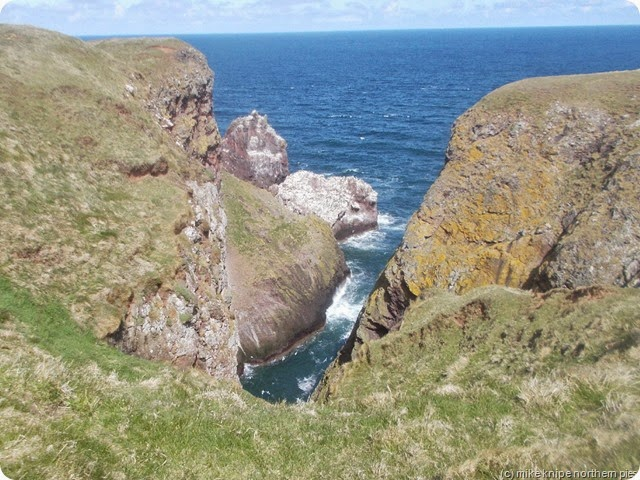st abbs rock scenery