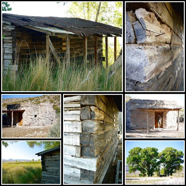PNWR - Buildings
