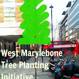 West Marylebone Tree Planting