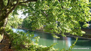 Rzeka Lublanica