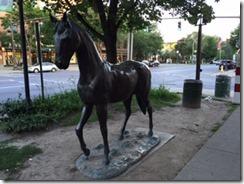 Saratoga horse 1
