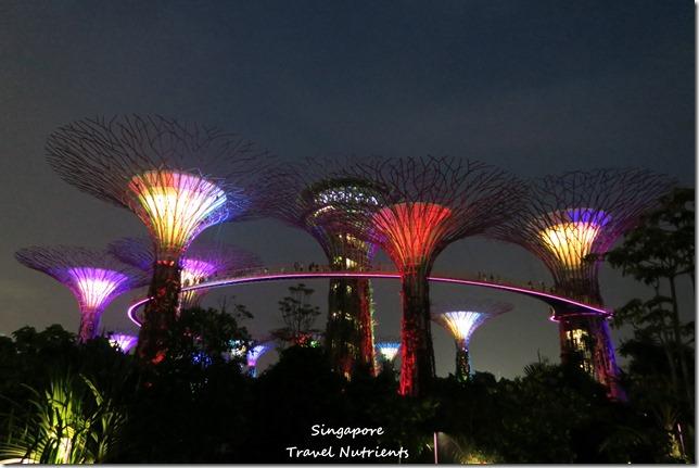 新加坡超級樹燈光秀 (31)