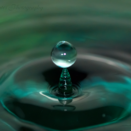 Water Trophy by Robert George - Abstract Water Drops & Splashes (  )