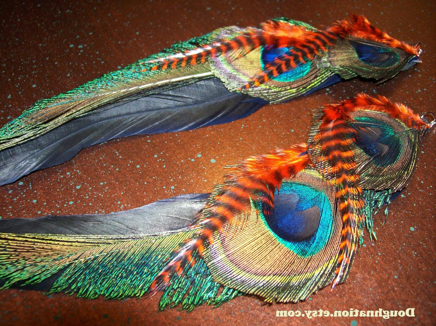 Tiger Peacock - Long Feather