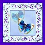 borboletas (66).jpg
