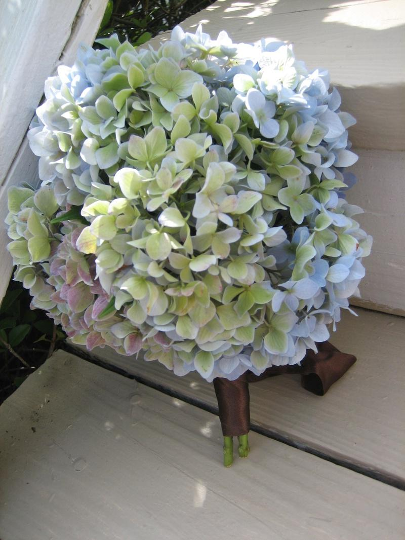Wedding bouquets & boutonnieres -  Coastal Dream Weddings