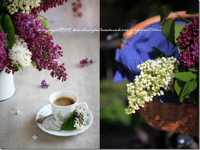 twarożek z bzem (lilakie) i miodem lawendowym (10)-horz