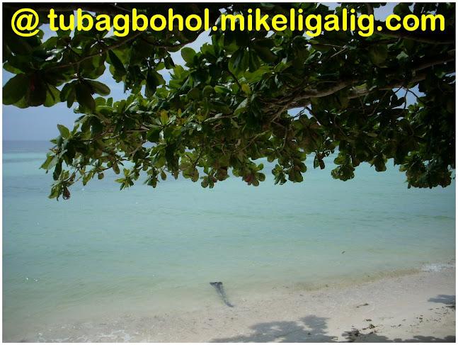 go-to-travel-trip-tour-anda-bohol-philippines-picture186 - Lovable Anda, Bohol - Anda - Bohol