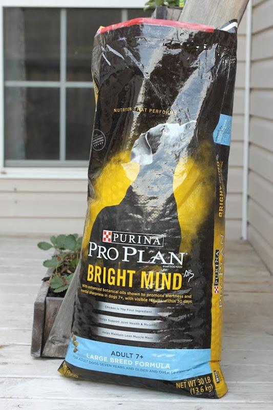 #brighmind