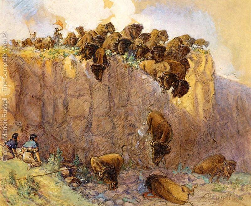 buffalo-jump-11