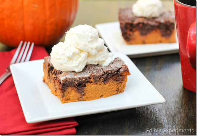 Chocolate Pumpkin Dump Cake from Edible Experiments (15 of 6)