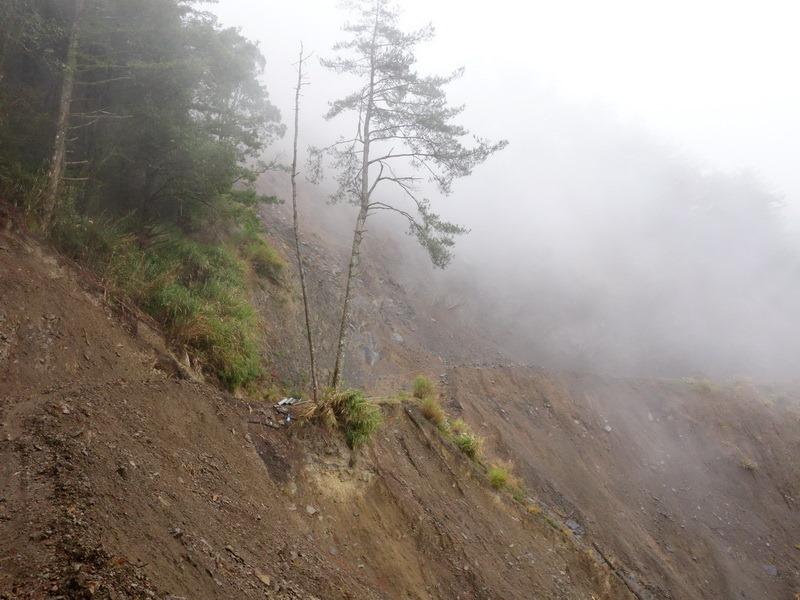 2013_1126-1129 鹿林山-1_134