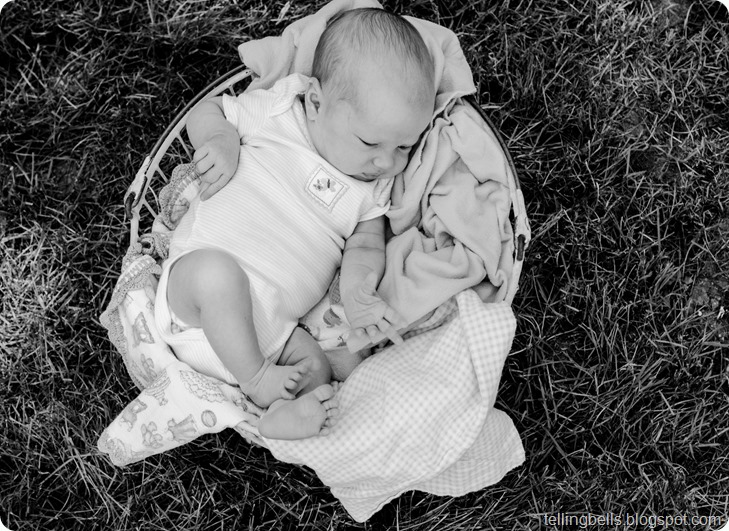 liby bell newborn-91
