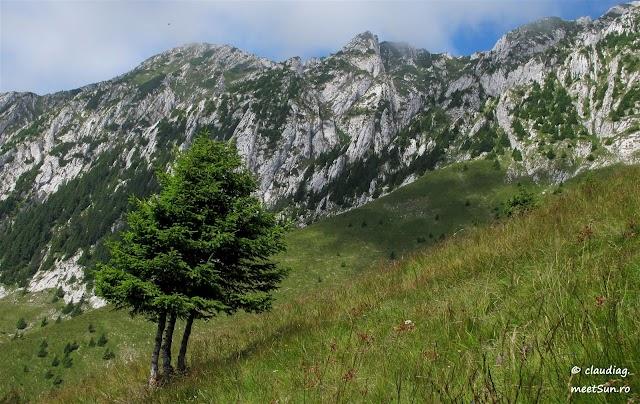 Piatra-Craiului-Nordica-7413.jpg