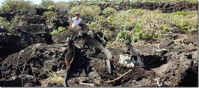 Galapagos 012