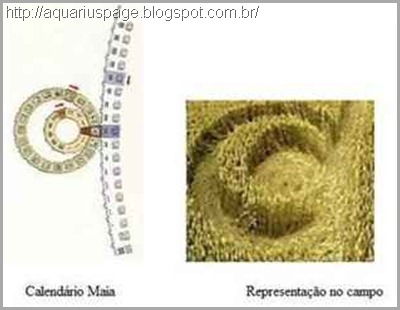 ciclo-maia-Crop Circle-2012