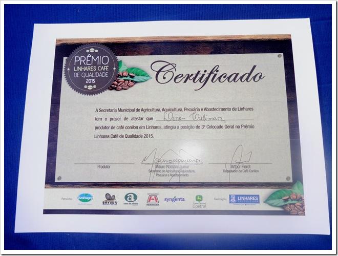 Certificado 3 colocado geral de café