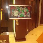 3D screen at a restaurant in Yokohama, Tokyo, Japan
