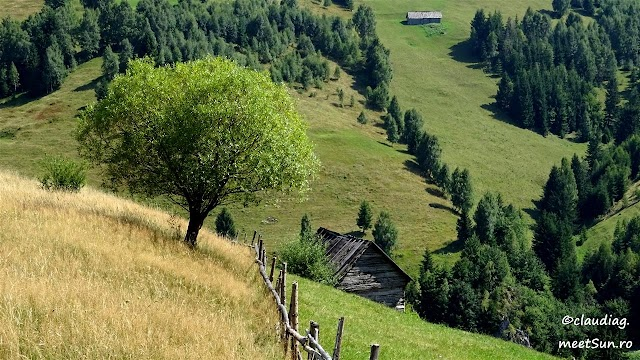 Piatra-Craiului-598.jpg