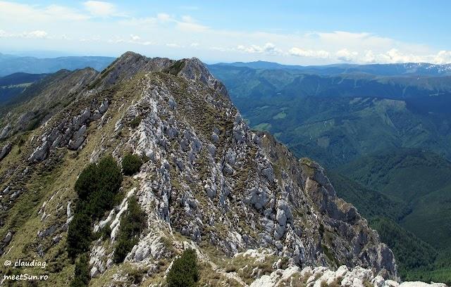 Piatra-Craiului-Sudica-5099-rw.jpg