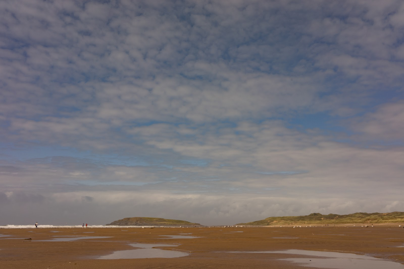 Gower2 (8 of 17).jpg