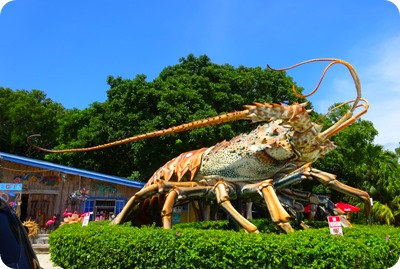 largest lobster