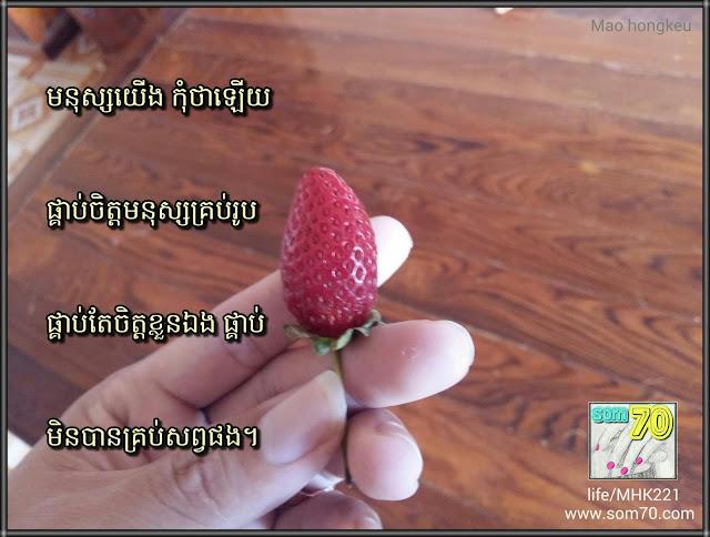 Life/MHK221