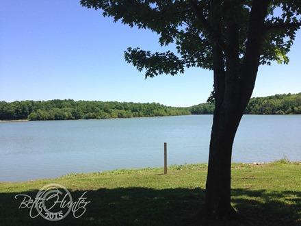 Free-lake