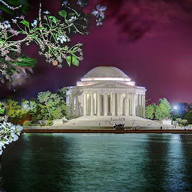 Jefferson Memorial at Night by Elk Baiter - Buildings & Architecture Statues & Monuments ( cherry, light painting, jefferson memorial, washington dc, monument, night,  )