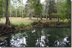 Blue Hole Spring - 2