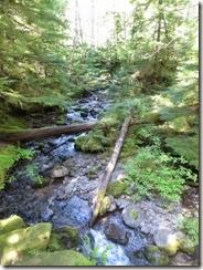 lewis river falls 08