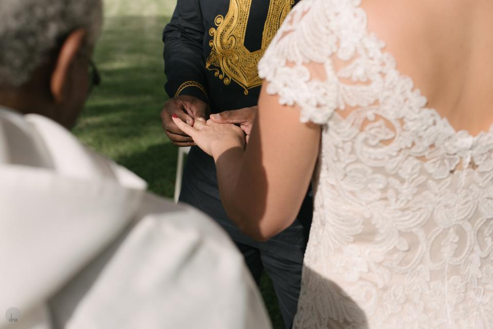 Hannah and Pule wedding Babylonstoren Franschhoek South Africa shot by dna photographers 565.jpg
