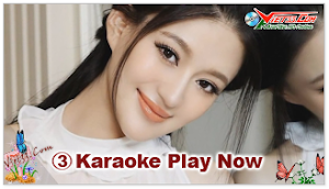 Karaoke - Tâm Sự Của Tôi CN (Beat)