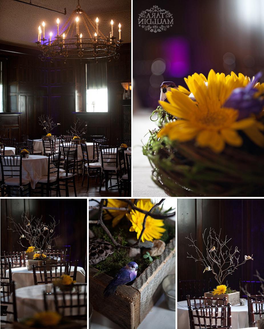 part 2   asheville wedding